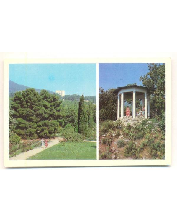 Крым. Никитский ботанический сад. В парке Монтедор. Видовая беседка