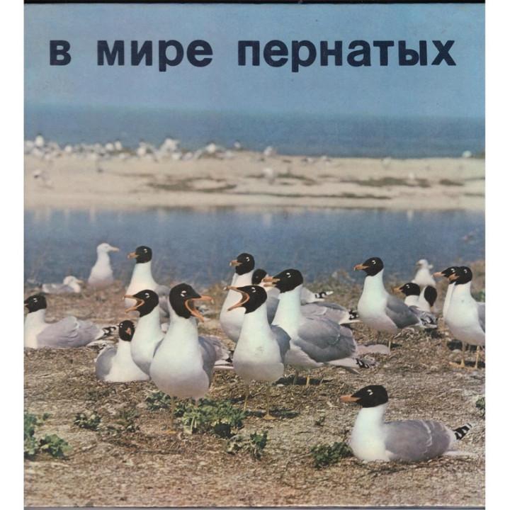В мире пернатых. Орнитологические заповедники юга Украины