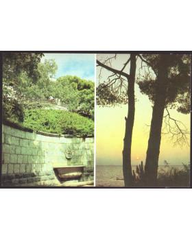 Крым. Никитский ботанический сад. Живописные уголки сада