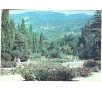 Никитский ботанический сад. Выставочный розарий в Верхнем парке