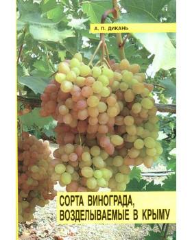 Основные сорта винограда, возделываемые в Крыму