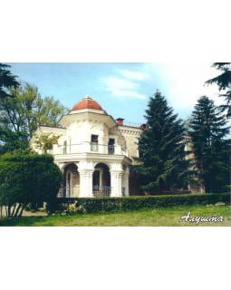 Дача купца Н.Стахеева