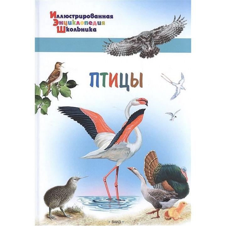 Орехов А.А. Птицы