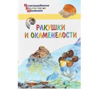 Орехов А.А. Ракушки и окаменелости