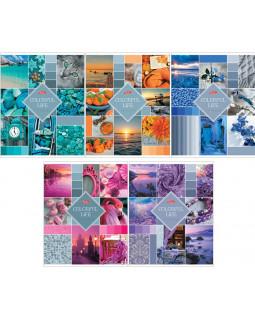 "Тетрадь ""Colorful life"", 48 листов, А5, клетка"