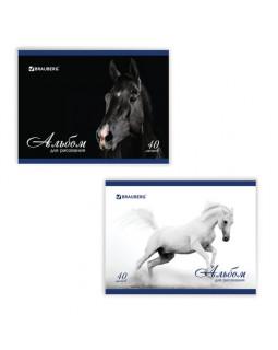 Альбом для рисования Благородные кони (2 вида) А4 40л.