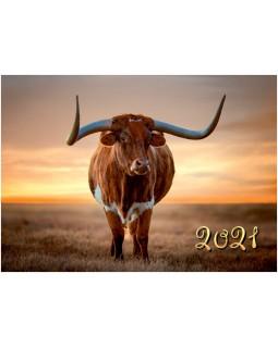 Календарь квартальный КВК-7 Техасский буйвол