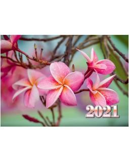 Календарь квартальный КВК-2 Тропический цветок