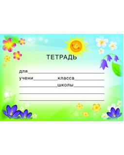 Наклейка на тетрадь. ШН-8127