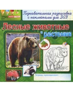 Лесные животные и растения