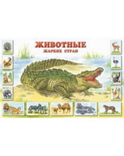 Плакат: Животные жарких стран. Что мы знаем об этих животных?