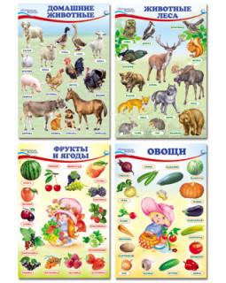 Домашние, лесные животные, фрукты и ягоды, овощи