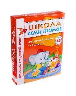 Полный годовой курс занятий с детьми 5-6 лет (12 книг в подарочной упаковке)