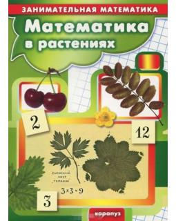 Математика в растениях (для детей 5-7 лет)