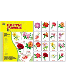 Цветы садовые. 16 демонстрационных карточек с текстом