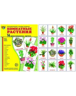 Комнатные растения. 16 демонстрационных карточек с текстом