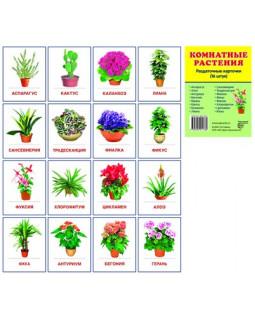 Комнатные растения. 16 раздаточных карточек с текстом
