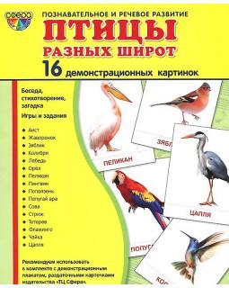 Птицы разных широт. 16 демонстрационных карточек с текстом