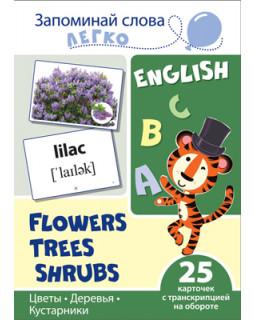 Цветы, деревья, кусты. 25 карточек с транскрипцией на обороте