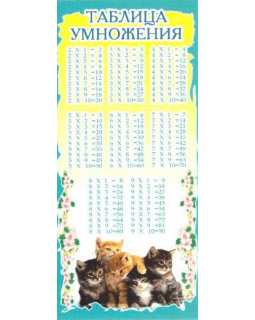 Карточка Таблица умножения ШМ-6319