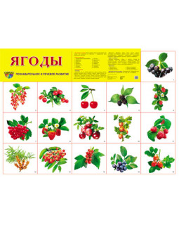 "Демонстрационный плакат А2 ""Ягоды"""