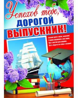 Плакат А2 Успехов тебе, дорогой выпускник! ПЛ-8621
