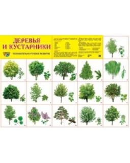 """Демонстрационный плакат А2 """"Деревья и кустарники"""""""