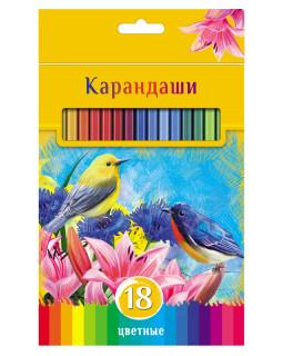 """Карандаши """"BG"""" 18 цветов """"Солнечный креатив"""" с заточкой, в коробке"""