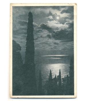 Ночь в Крыму