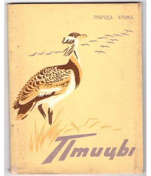 Сунгуров А. Н. Птицы