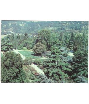 Вид на выставочный участок канн в Верхнем парке