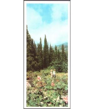 Ялта. Розарий в Никитском ботаническом саду