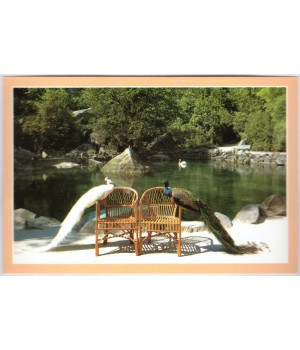 Лебединые озера