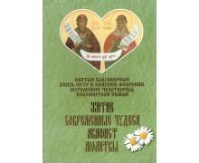 Святые благоверные князь Петр и княгиня Феврония, муромские чудотворцы, покровители семьи